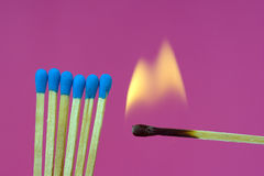 Burning Flame  Matchstick Stock Images