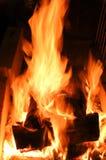 Burning flames Stock Photography