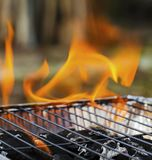Burning flames and barbecue. Closeup Stock Image