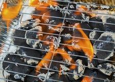 Burning flames and barbecue. Closeup Stock Photos