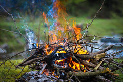 Burning Flames Royalty Free Stock Photography
