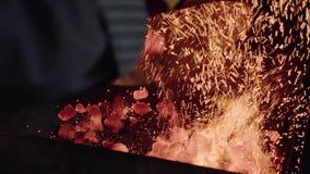 burning flamma Lägereldbakgrund Hoade kol brand Kol för träbrand, varm röd kolbakgrund burning kol lager videofilmer
