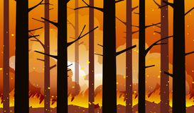 Burning forest fire natural disaster. Burning forest fire with charred trees in silhouette. Natural disaster. Vector illustration royalty free illustration