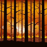 Burning forest fire natural disaster. Burning forest fire with charred trees in silhouette. Natural disaster. Vector illustration Stock Photo