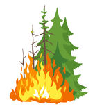 Burning Forest. Spruces in fire flames, nature disaster concept illustration, poster danger, careful with fires in the woods, isolated Royalty Free Stock Photo