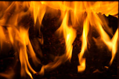Burning in the furnace pellets from pine Royalty Free Stock Images