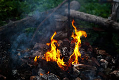 Burning garbage Stock Images