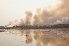 Burning garbage heap of smoke Royalty Free Stock Photos