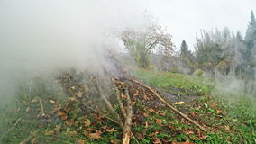 Burning of garden waste stock footage