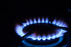Burning Gas 1. Blue gas flames - stove burner stock photo