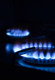 Burning Gas 1. Blue gas flames - stove burner stock image