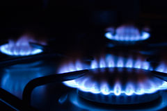 Burning Gas 1. Blue gas flames - stove burner Stock Photography