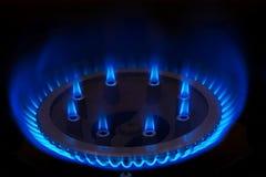 Burning gas on the kitchen gas stove. Stock Photos