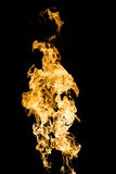 Burning golden fire Royalty Free Stock Photo