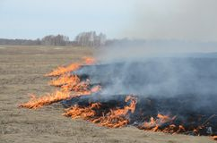 Burning grass in the steppe. The usual spring fire in the steppe stock images