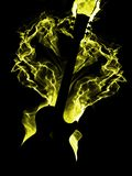 Burning guitar Royalty Free Stock Photos