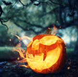 Burning halloween pumpkin in a forest at night. Burning halloween pumpkin on leaves in a forest at night Royalty Free Stock Photography