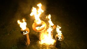 Burning halloween pumpkins on tree log in darkness, field, mist, dusk. Scary funny angry big orange pumpkin exhales fire. Flame and smoke, breathes color steam stock footage