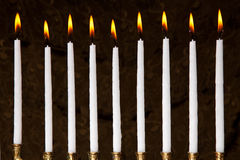 Burning hanukkah candles in a menorah Royalty Free Stock Image