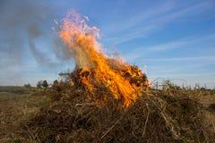 Burning hay Stock Photography