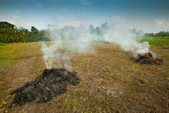 Burning heap of straw on the field Stock Photos