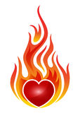 Burning heart. Isolated on white royalty free illustration