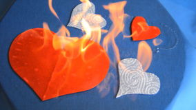 Burning Heart In Two Colors. These are shape hearts on fire, the fire is big and unstoppable. Video for valentine's day, great passion and fire stock footage