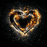 Burning heart. For your design Royalty Free Stock Photography
