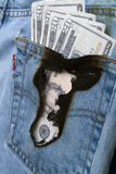 Burning a hole in my pocket 2. Concept image of money burning a hole in a jeans pocket stock photo