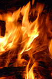 Burning hot. Flames with wood pieces Stock Photos