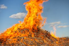 Burning huge bonfire against the blue sky royalty free stock image