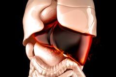 Burning human liver closeup. Liver disease concept. 3D illustration Royalty Free Stock Photo