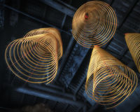 Burning incense coils at temple of Macau Stock Photography