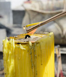 Burning incense sticks. On a yellow candle flame Royalty Free Stock Photography
