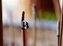 Burning Insence Stick Stock Image