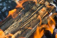 burning journal royaltyfri bild