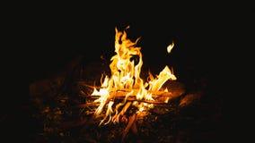 burning lägerbrand Royaltyfri Foto