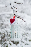 Burning lantern hanging on the branch snow. Winter day Stock Image