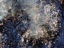 burning leafs Flammor, grå aska och vit rök royaltyfri foto