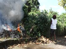 Burning leaves in the tropics. A smoky blaze in a bushy garden in the caribbean stock footage