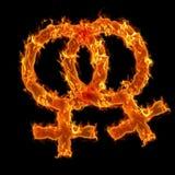 Burning Lesbian Symbol Royalty Free Stock Photography