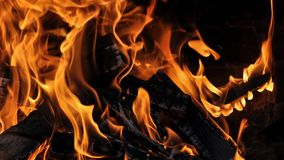 Burning log and fire. Fire flames with logs and dark background royalty free stock image