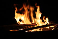 Burning Log in Hot Fire and Flames Stock Images