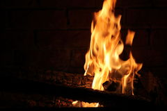 Burning Log in Hot Fire and Flames Royalty Free Stock Photography