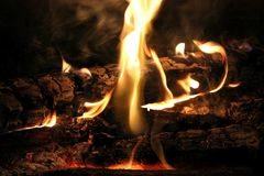 Burning Log in Hot Fire and Flames Royalty Free Stock Image