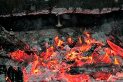 Burning Log in Hot Fire and Flames Royalty Free Stock Images
