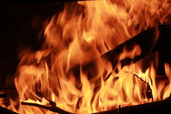 Burning Log in Hot Fire and Flames Stock Photography