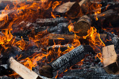 Burning Log Royalty Free Stock Photo