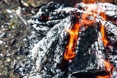 Burning log with smoke Stock Photography