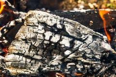Burning log with smoke Royalty Free Stock Images